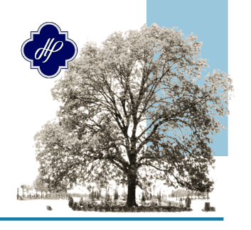 A pencil sketch of a large pecan tree, and the Town's quatrefoil logo