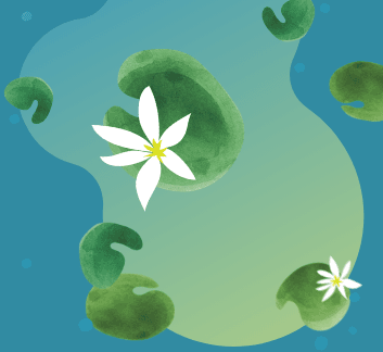 computer graphic image of a pond with floating lily pads